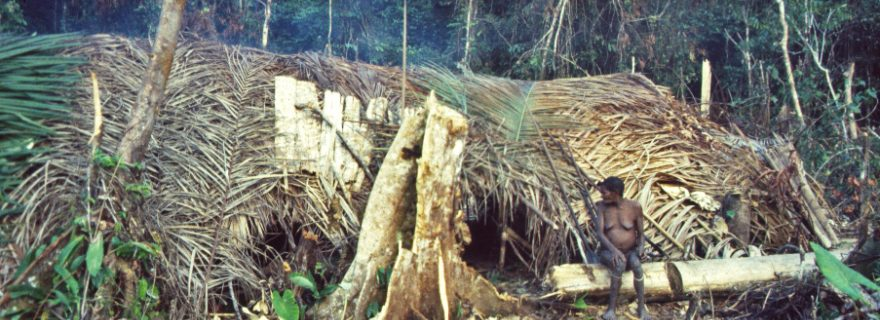 Self-isolation as a Choice: The Sentinelese and the Missionary
